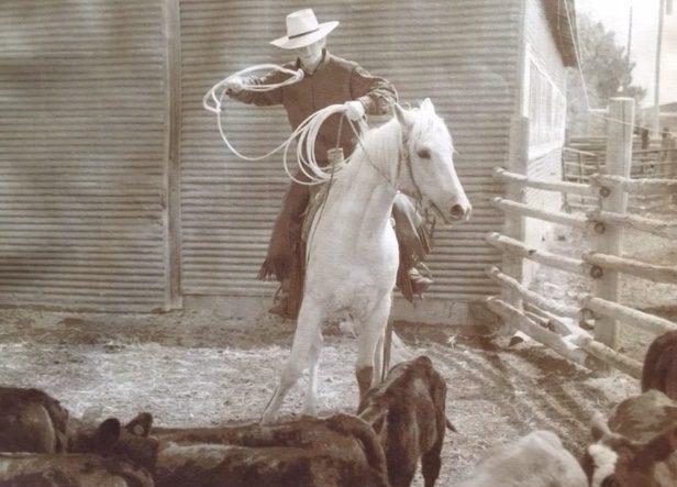 young-cowboy-calf-pen